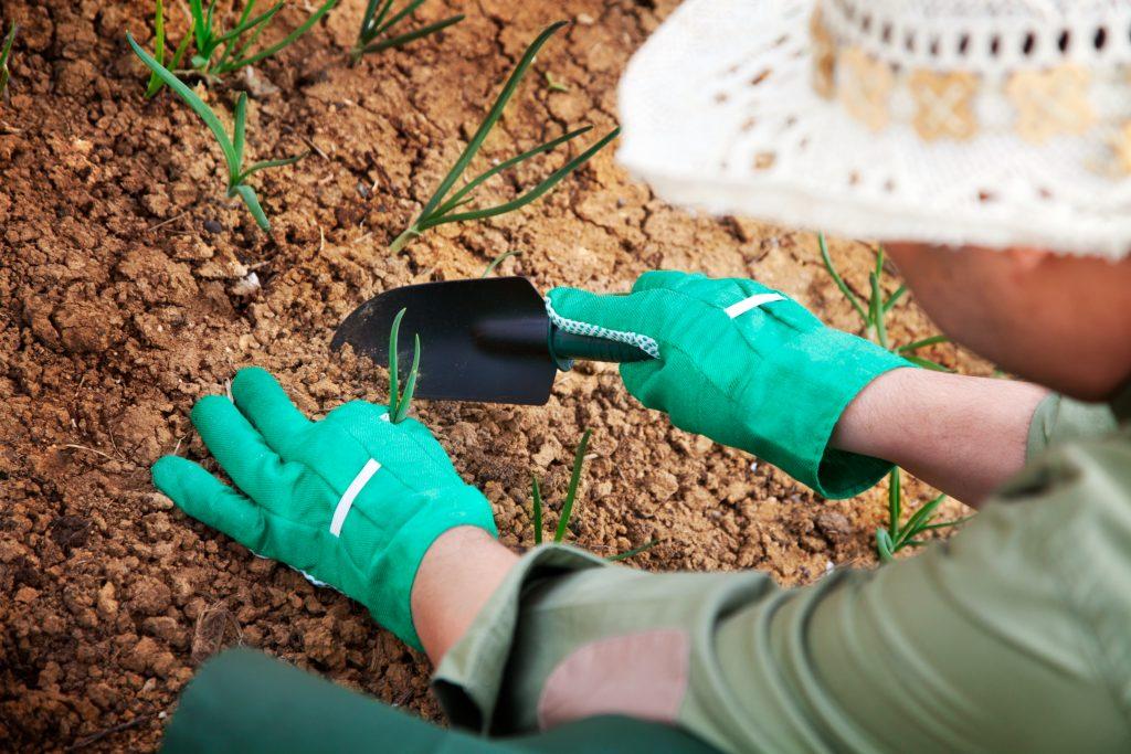 Kosten tuin egaliseren door Multi Concurrent