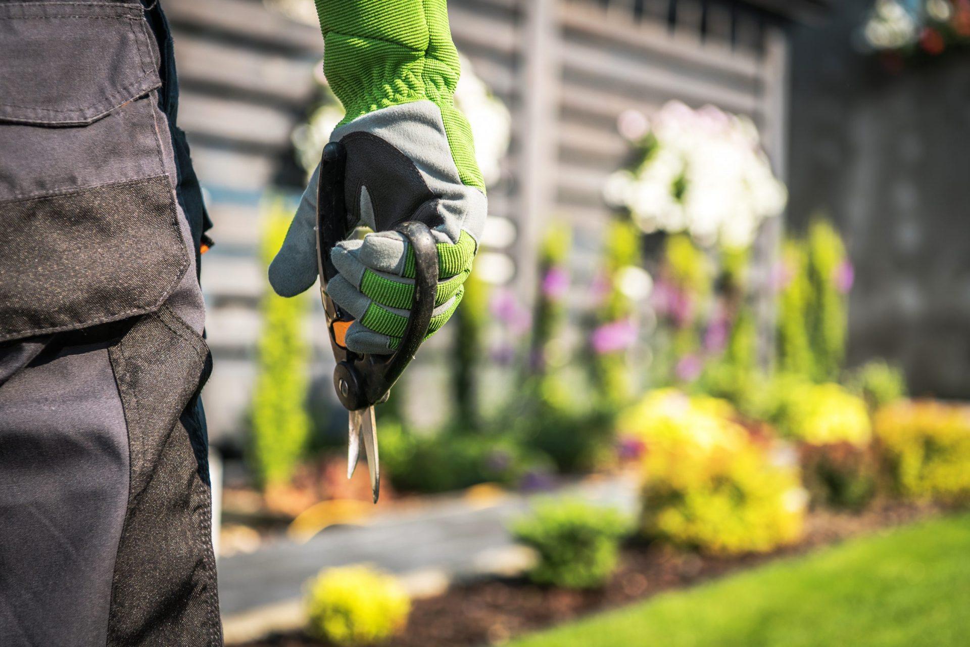 Voor-een-mooie-tuin-kiest-u-voor-Multi-Concurrent